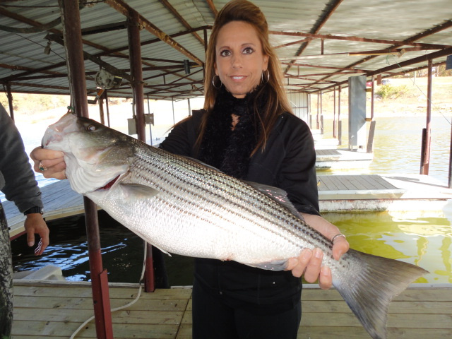 Striper fishing with best picture collections for Fishing guides on lake texoma